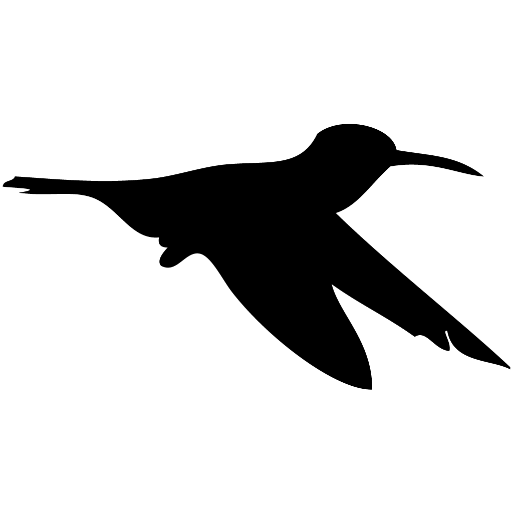 Hummingbird clipart anna's hummingbird. Anna s overview all
