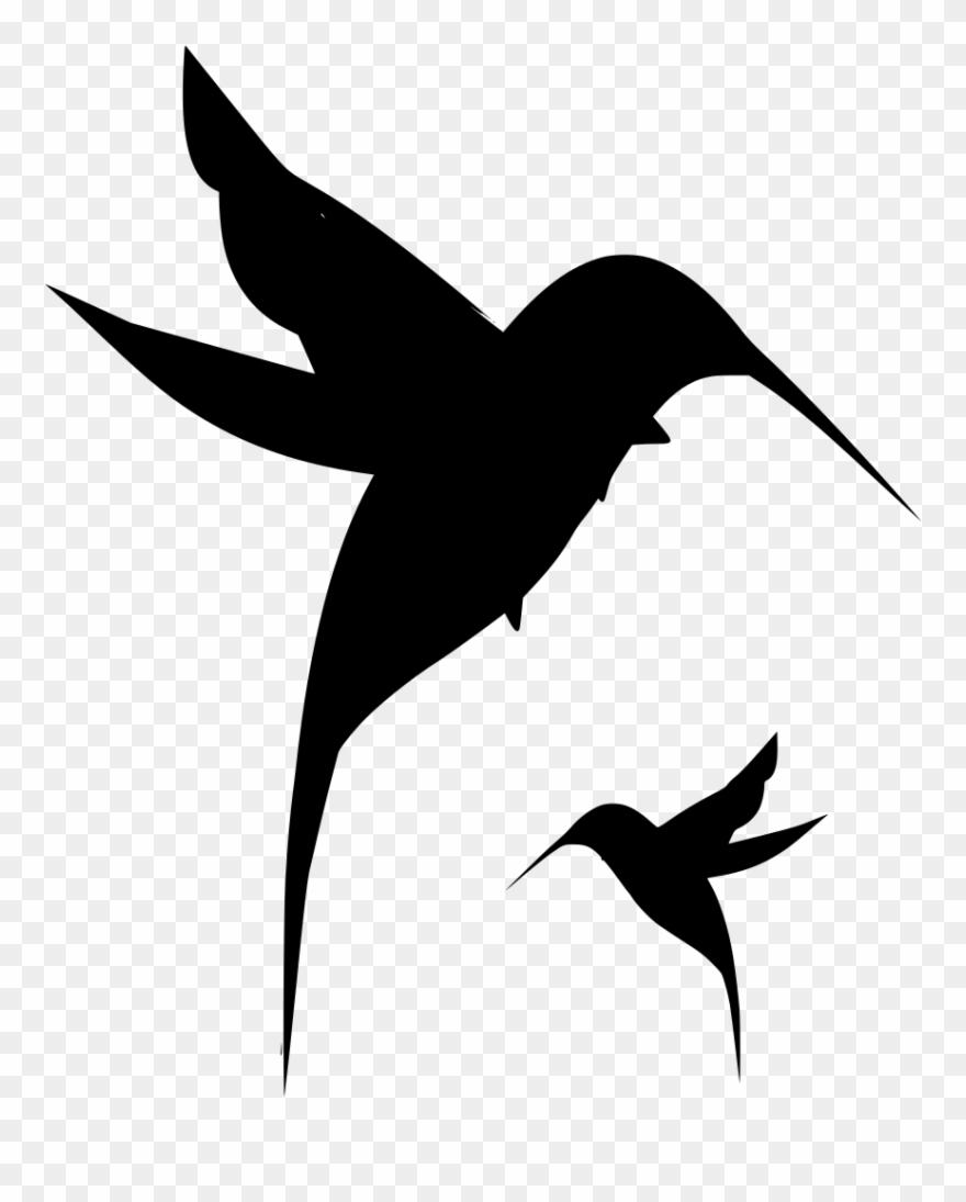 Download png tattoo . Hummingbird clipart baby hummingbird