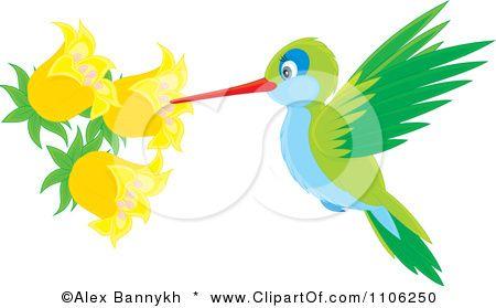 Hummingbird clipart baby hummingbird. Stuff to make