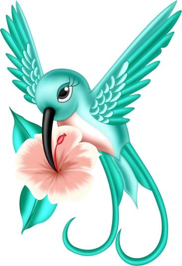 Oiseaux birds clip art. Hummingbird clipart beautiful bird
