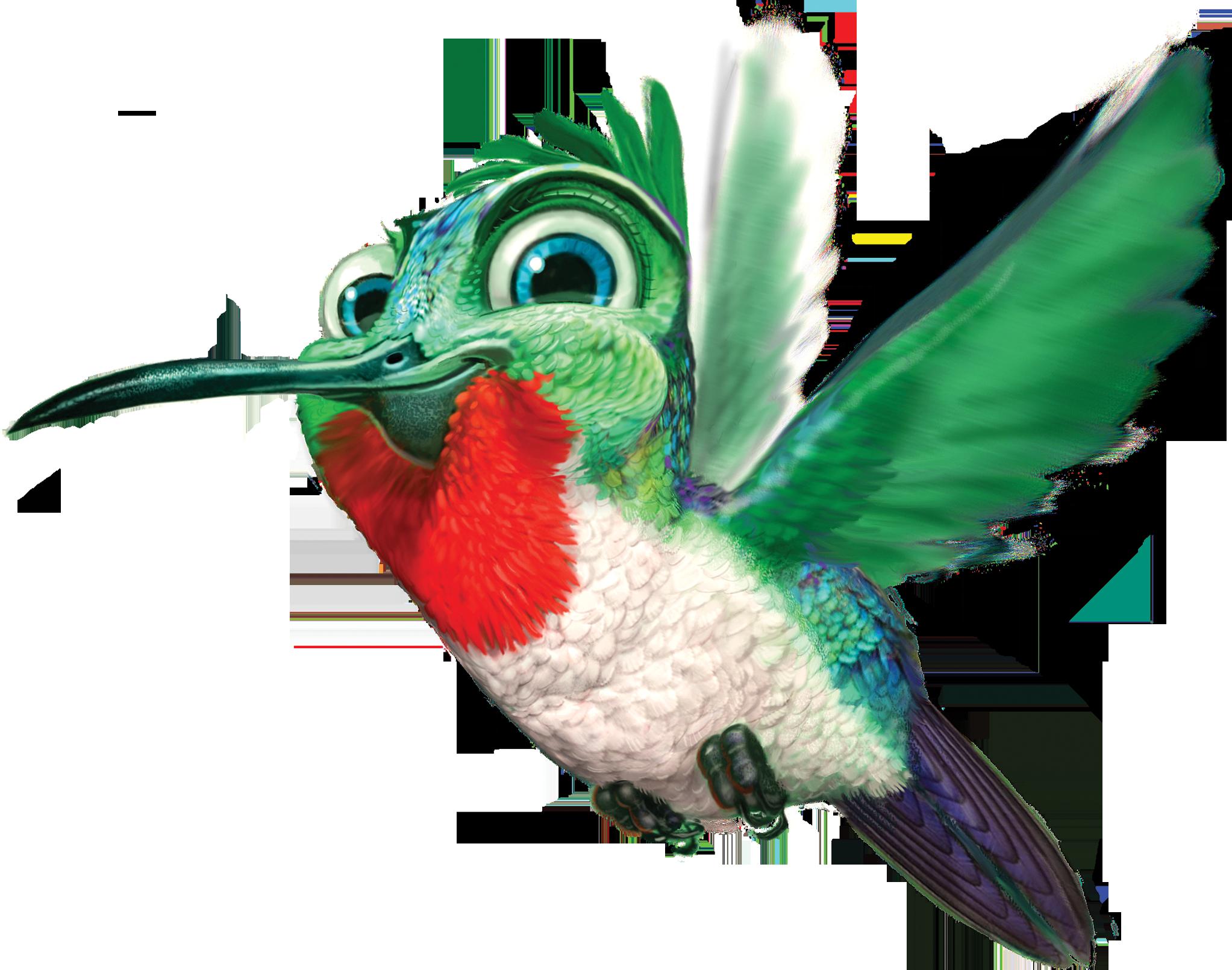 Png transparent images all. Hummingbird clipart beautiful bird
