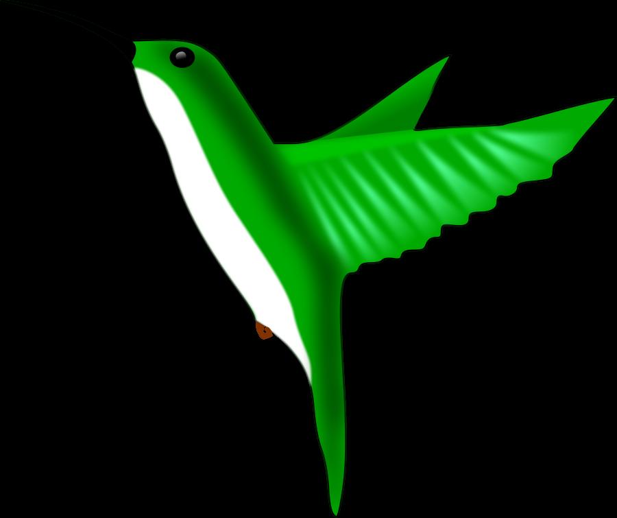 Clip art vector free. Hummingbird clipart beautiful bird