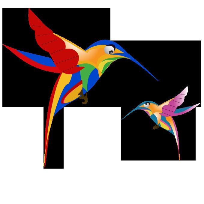 Hummingbird clipart beautiful bird. Google update free image