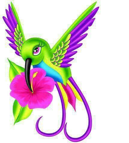Hummingbird clipart beautiful bird. Pin by kerrie burtram