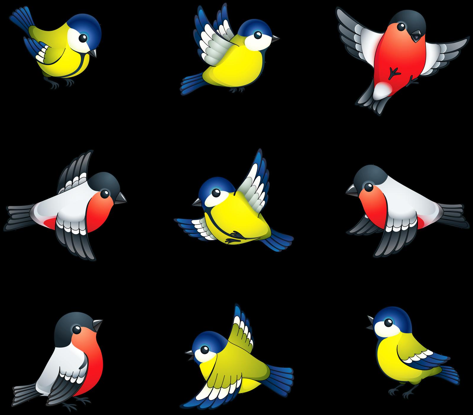 Hummingbird clipart birb.  png album