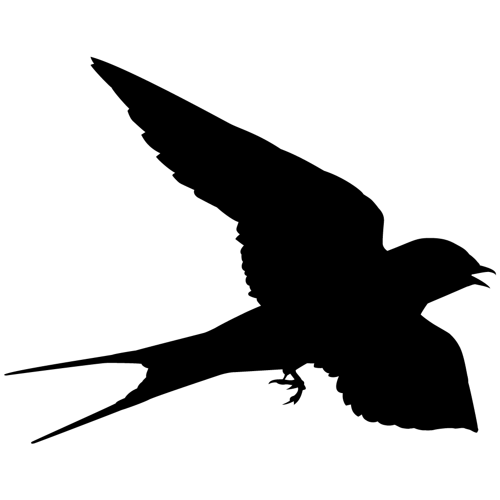 Hummingbird clipart birb. Browse by shape all