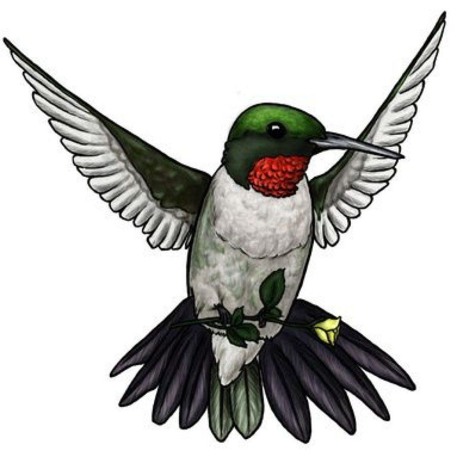 Download tattoo . Hummingbird clipart clip art