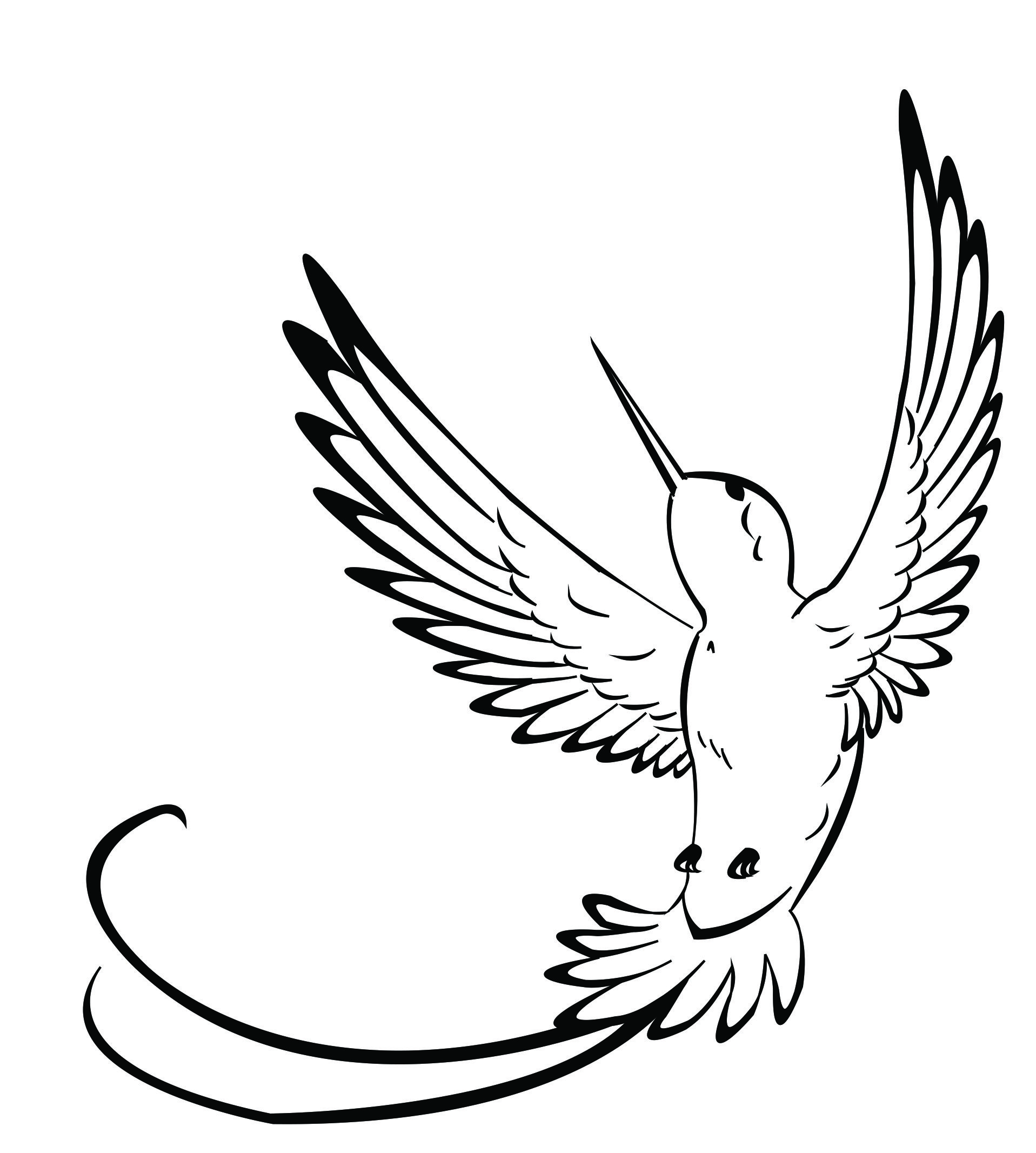 Hummingbird clipart coloring page. Drawings best sketch