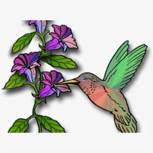 Hummingbird clipart copyright free. Cliparts silhouettes cartoons