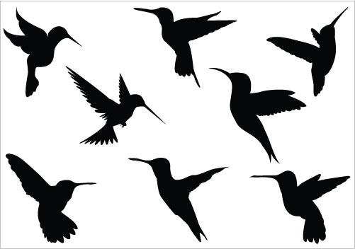 Best clipartion com . Hummingbird clipart copyright free