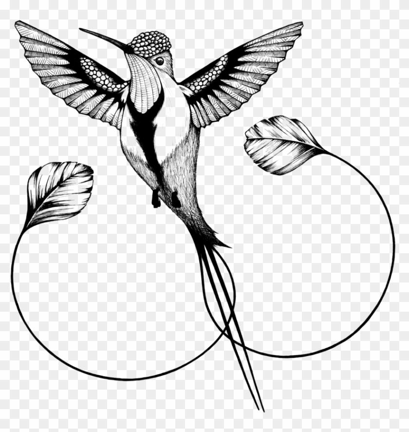 Hummingbird clipart flower tattoo. Hummingbirds png transparent clip