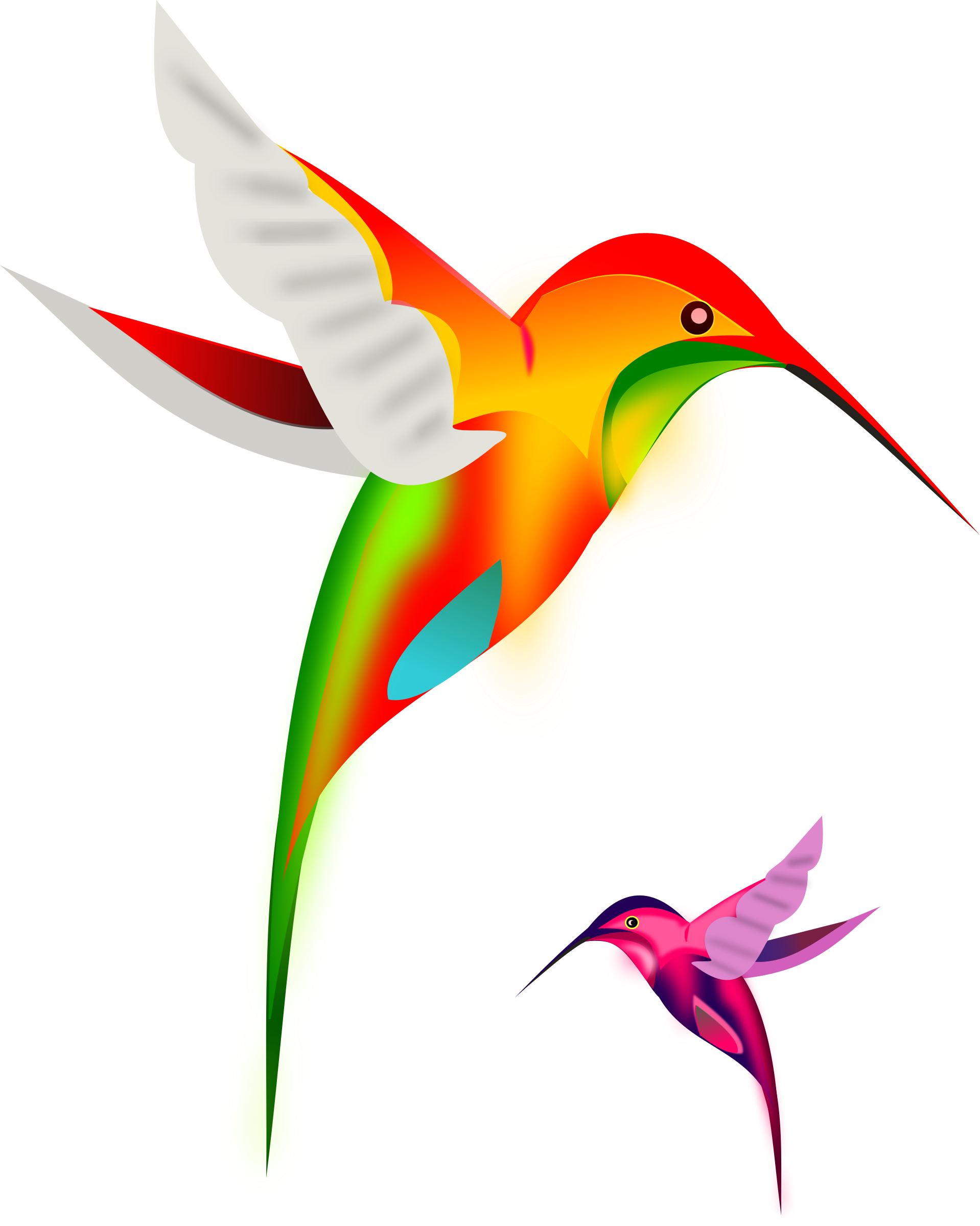 Hummingbird clipart flower tattoo. Colibri birds by gurica