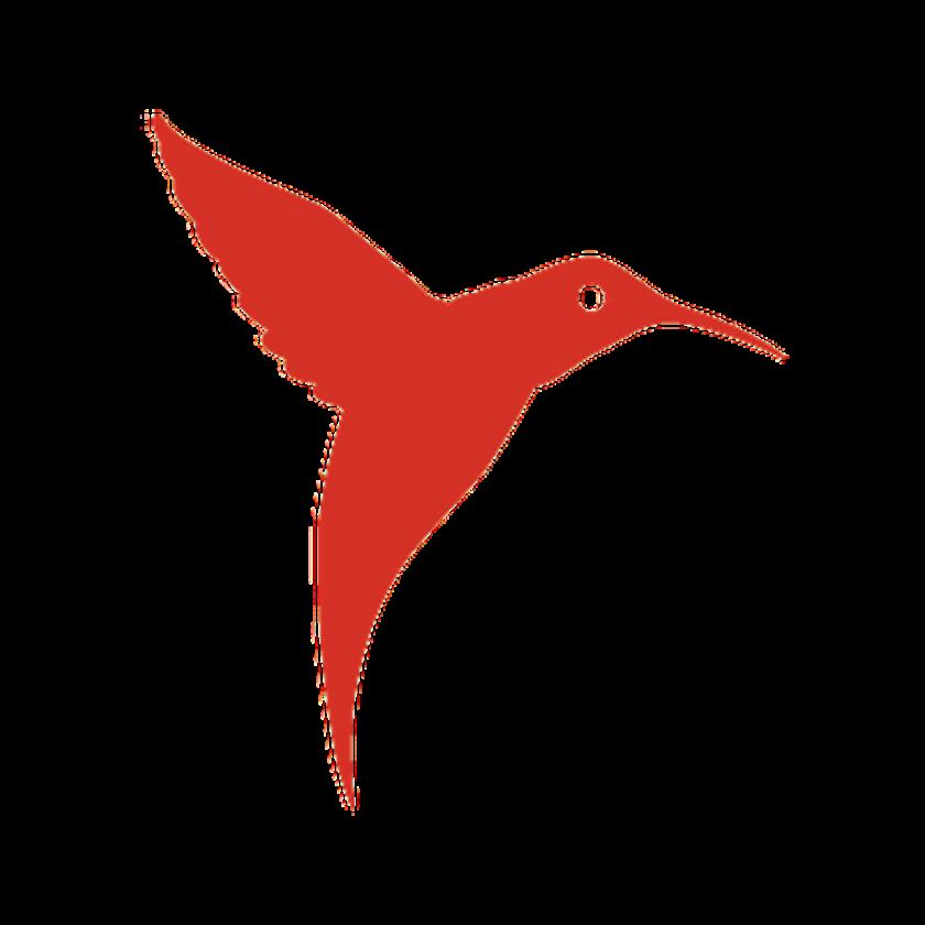 Hummingbird clipart flower tattoo. Drawing free download best