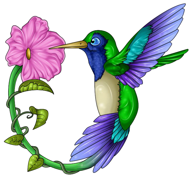 Hummingbird clipart flower tattoo.  collection of png