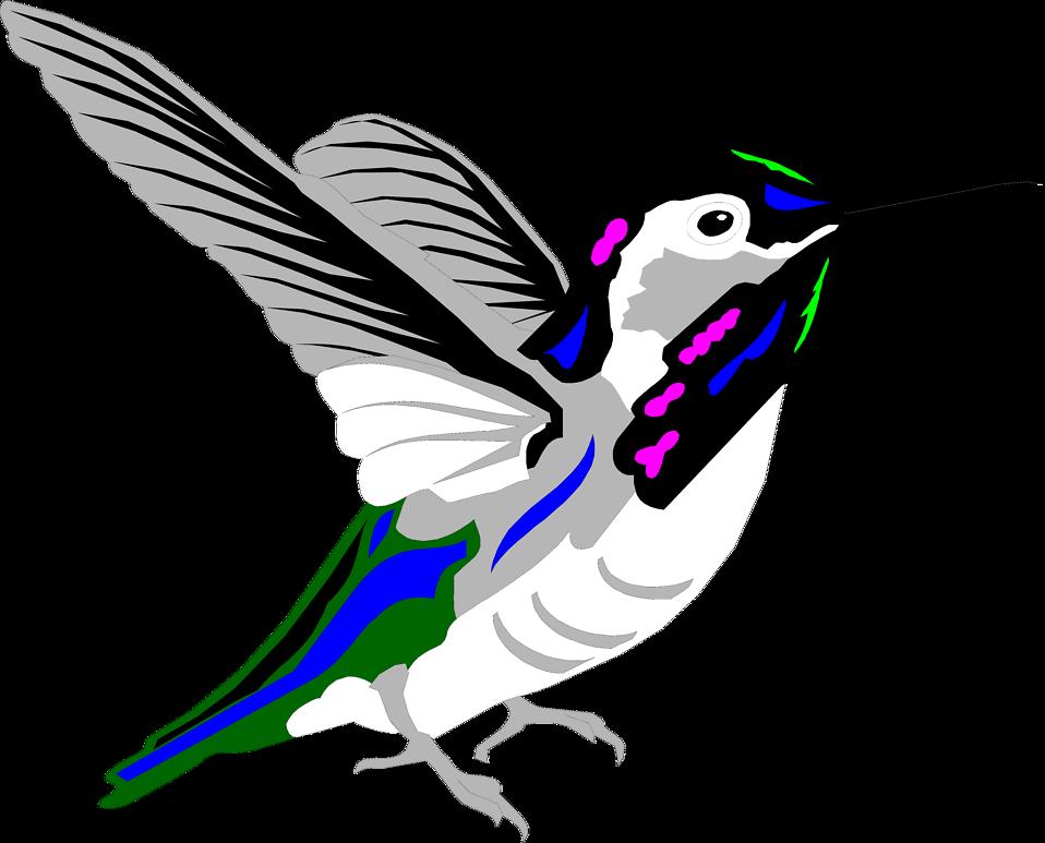 Free stock photo illustration. Hummingbird clipart green hummingbird