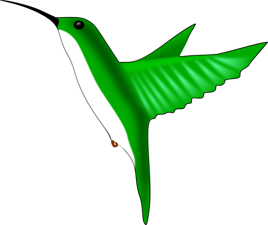 Collection of free humming. Hummingbird clipart green hummingbird