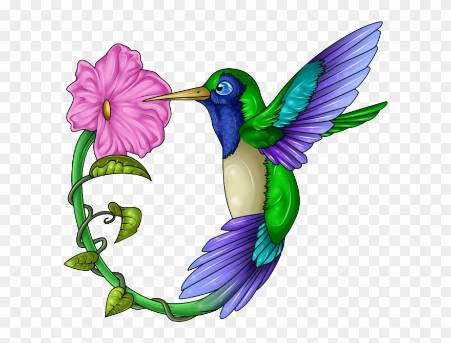 Clip art free stock. Hummingbird clipart heart