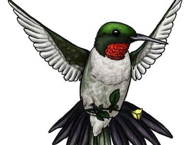Hummingbird clipart heart. Free download clip art