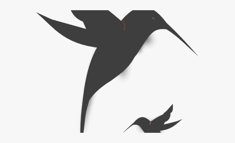 Hummingbird clipart hummingbird outline. Hummingbirds black