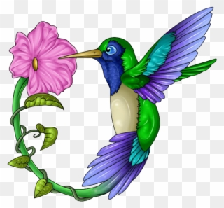 Hummingbird clipart ibon. Png download full size