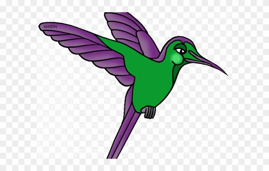 Clip art amazon rainforest. Hummingbird clipart jungle flower