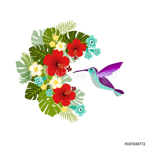 Hummingbird clipart jungle flower. Flying drinking nectar from