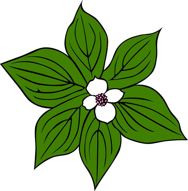 Green flower flowers cartoon. Plants clipart rainforest
