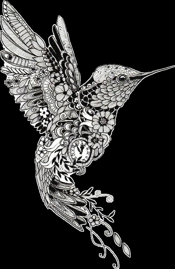 Download tattoo henna mehndi. Hummingbird clipart mandala