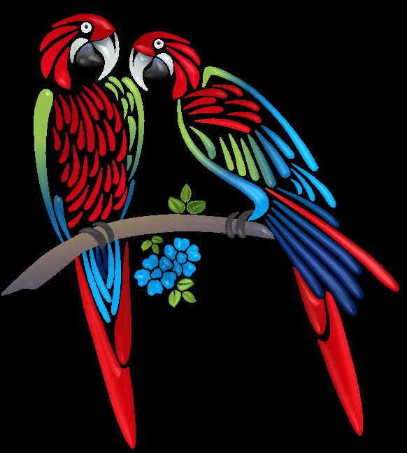 hummingbird clipart parrot