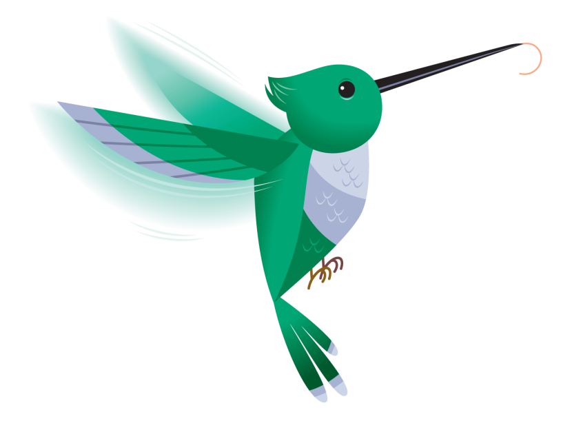 collection of png. Hummingbird clipart rainbow