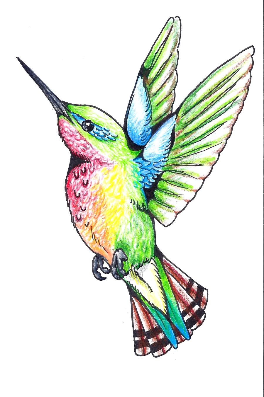 Hummingbird clipart rainbow. Download tattoos png hq