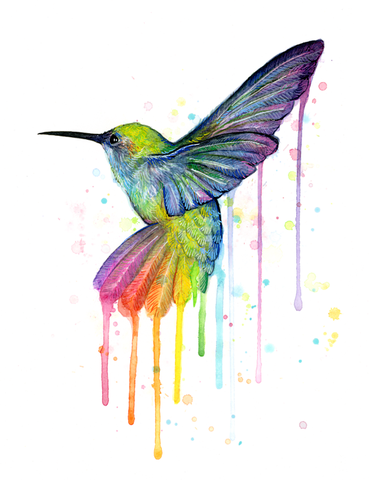 Hummingbird clipart rainbow. Watercolor painting art