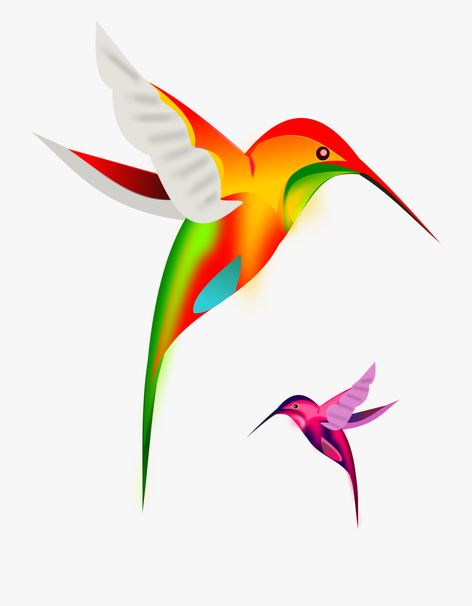 Colibri birds by gurica. Hummingbird clipart rainbow
