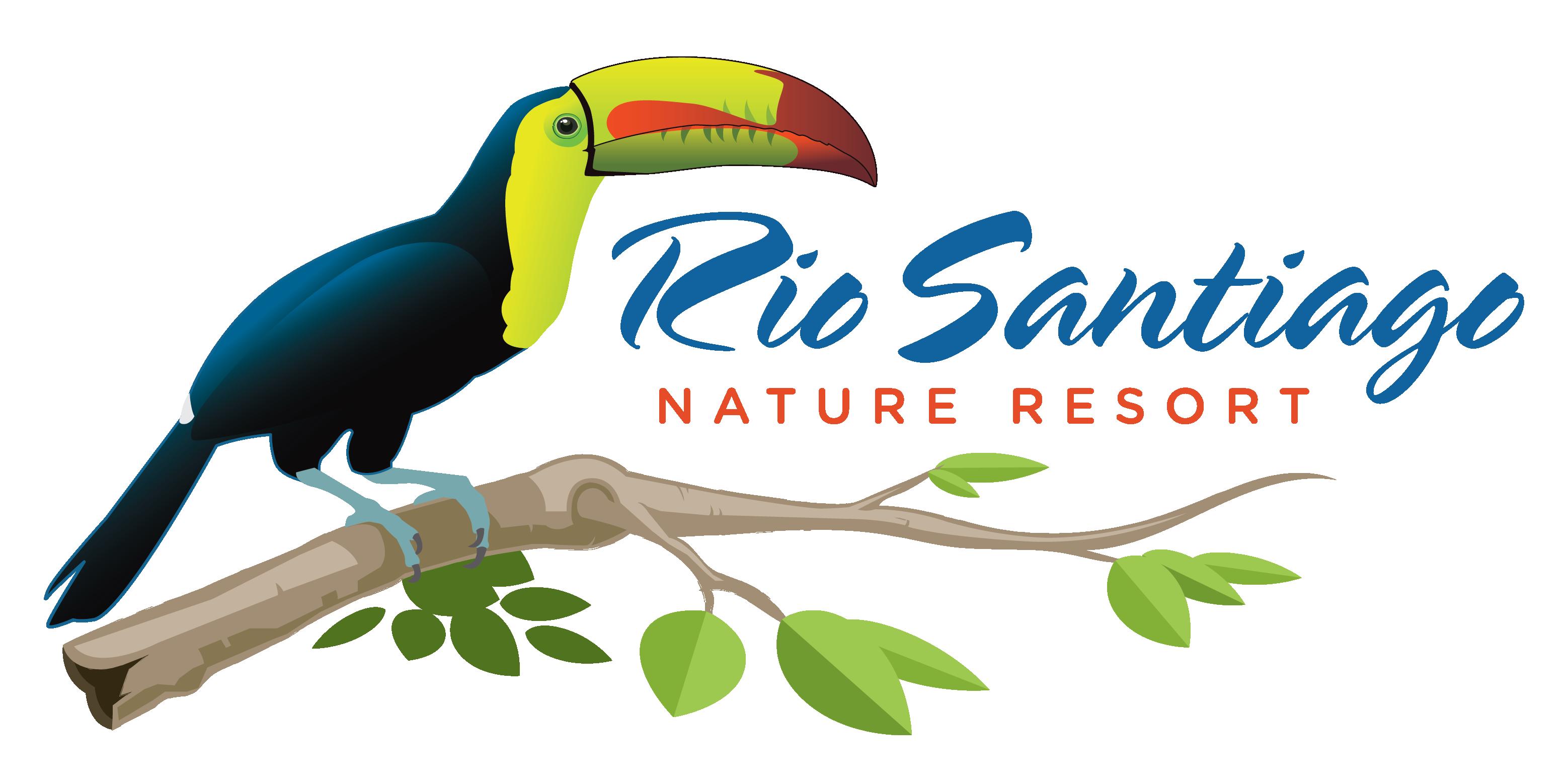 Home rio santiago nature. Toucan clipart bill