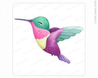 Hummingbird clipart real. Etsy