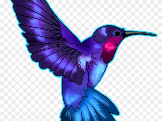 Hummingbird clipart realistic animal. Free download clip art