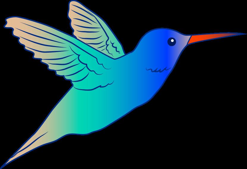 Free on. Hummingbird clipart realistic animal