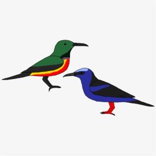 Image black and . Hummingbird clipart realistic animal