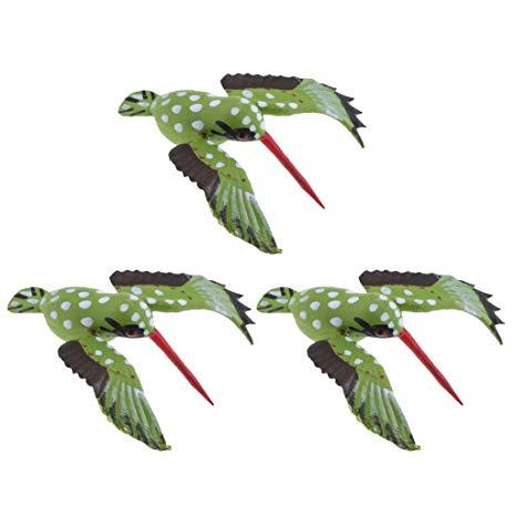Hummingbird clipart realistic animal. Amazon com fenteer pcs