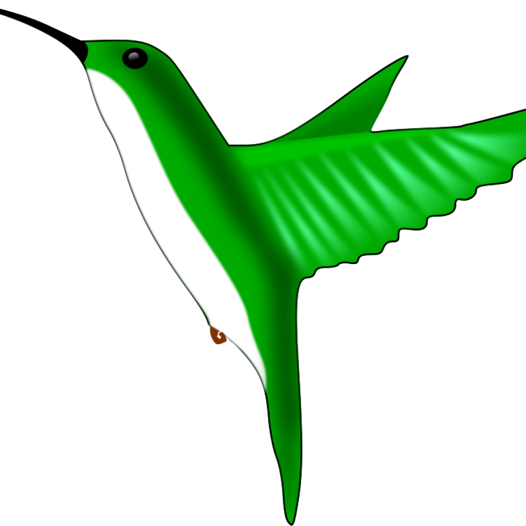 Thank you hatenylo com. Hummingbird clipart royalty free