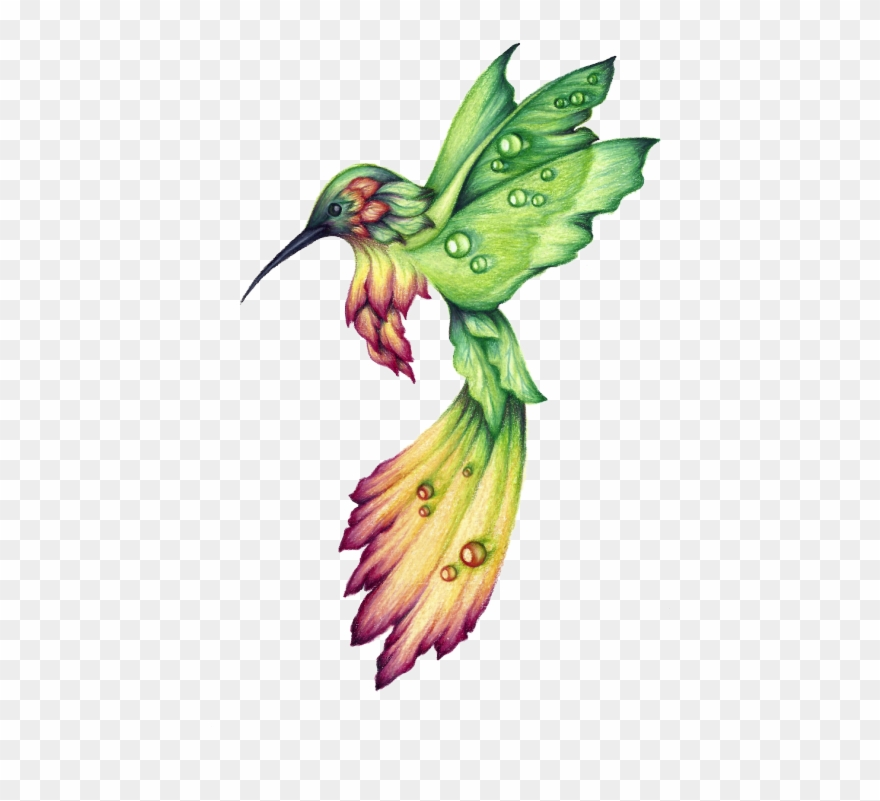 Png download clockwork drawing. Hummingbird clipart royalty free