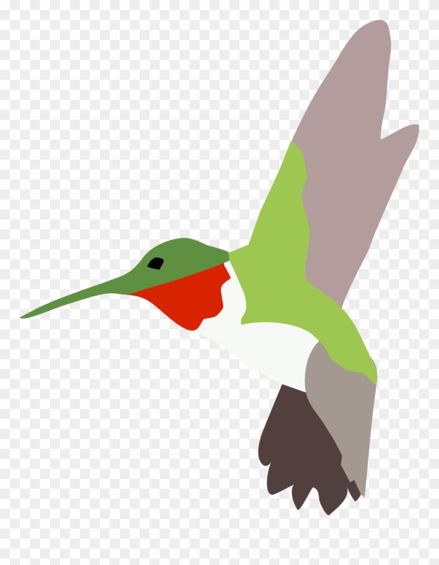 Hummingbird clipart ruby throated hummingbird. Pinclipart