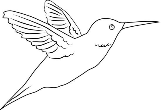 Free cliparts download clip. Hummingbird clipart simple