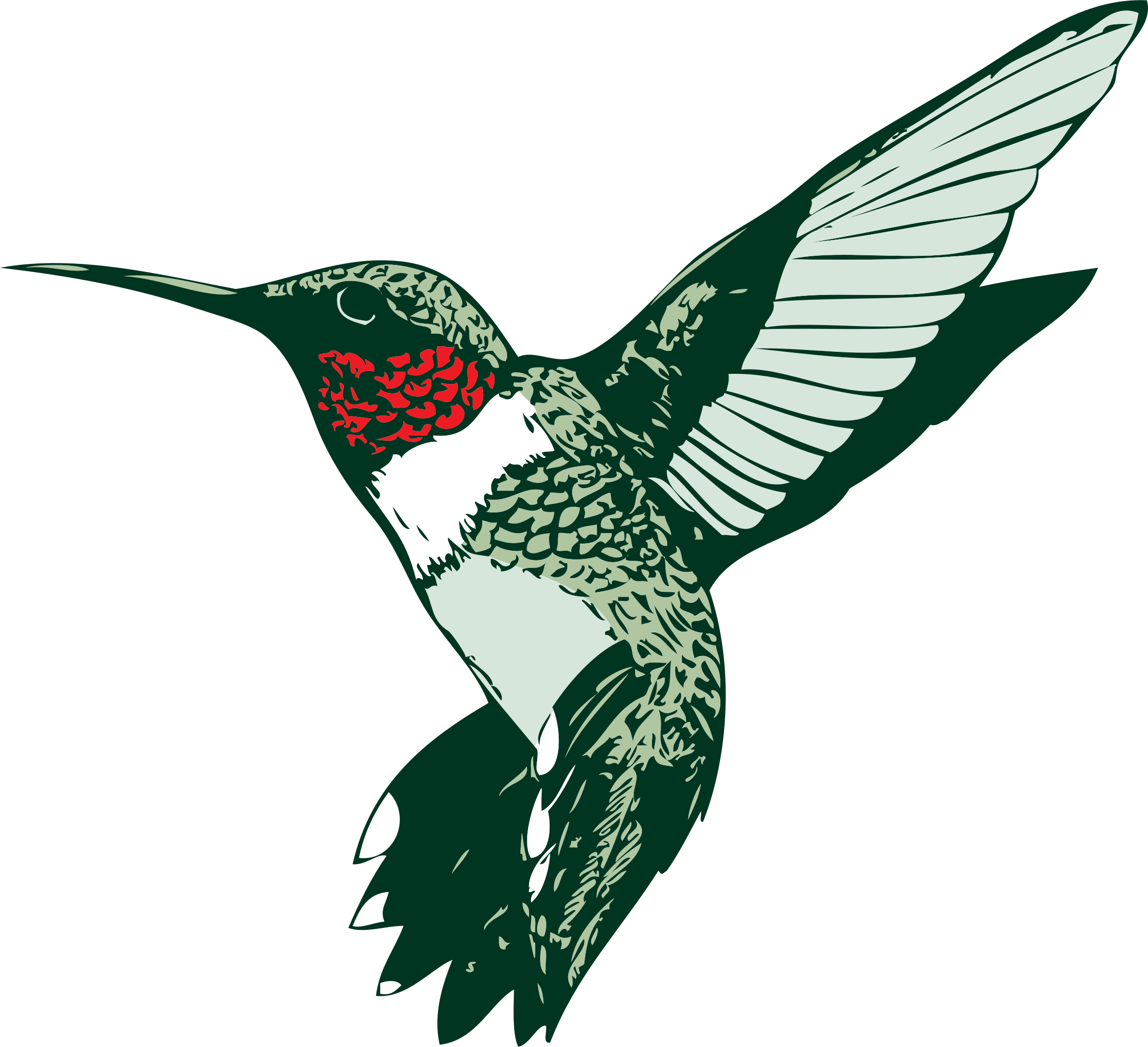 Attractive design images for. Hummingbird clipart simple