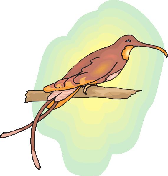 Hummingbird clipart svg free. Brown perched clip art