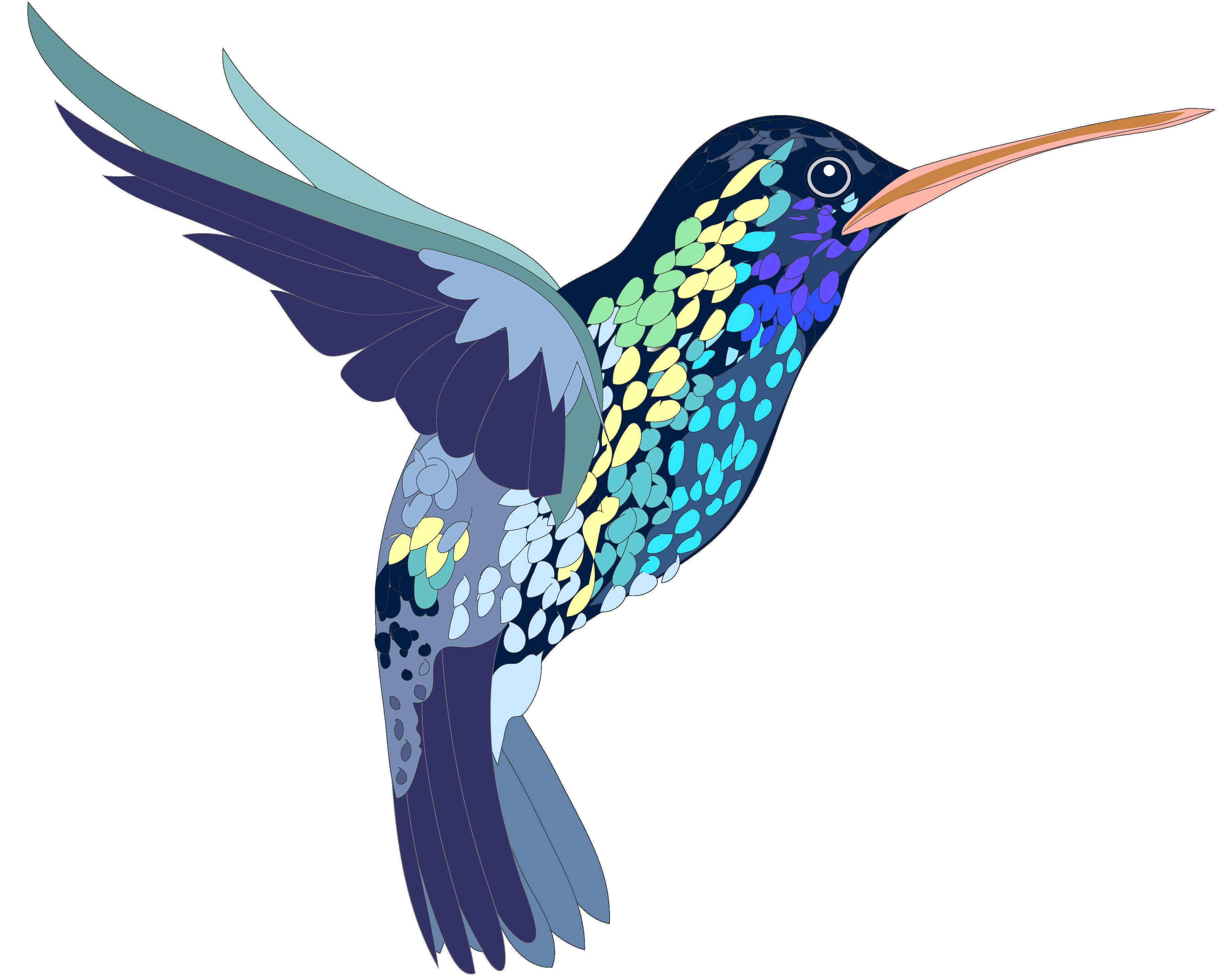 Clip art creation creatures. Hummingbird clipart svg free