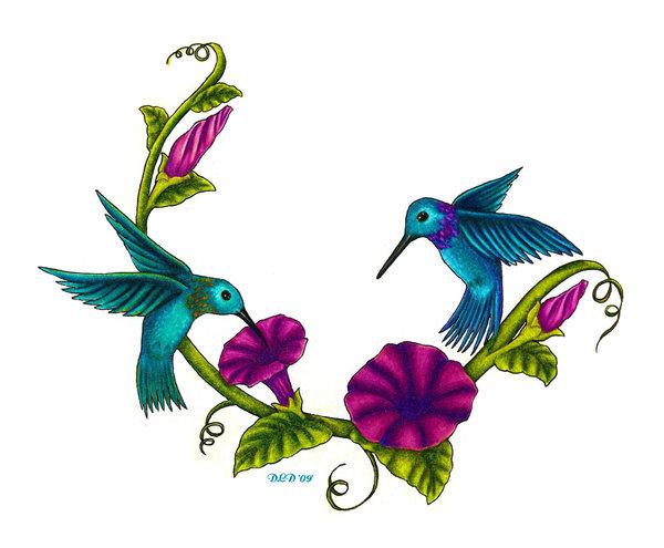Hummingbird clipart two. Humming bird graphics free