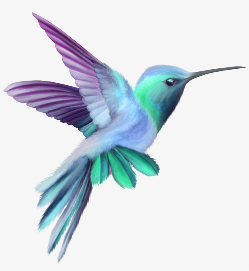 Image result for free. Hummingbird clipart two