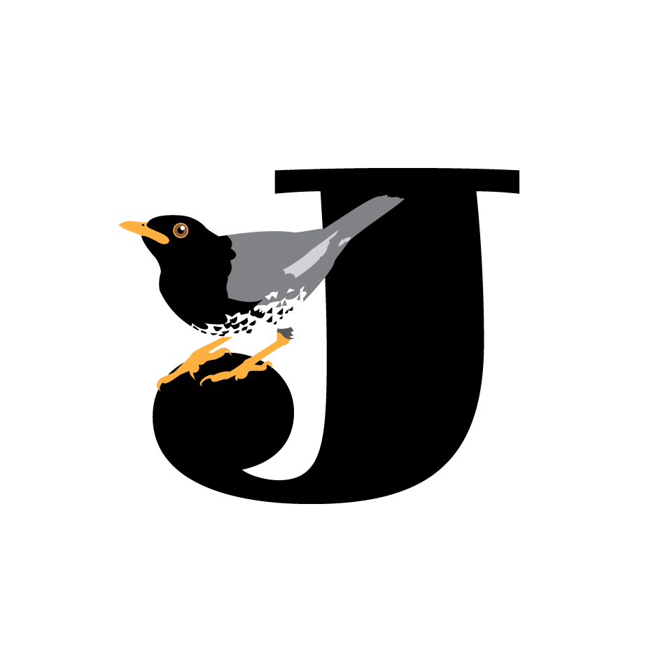 Bird type coloveration japanese. Hummingbird clipart xantus