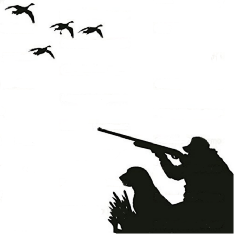 Hunting clipart waterfowl hunting. Dog silhouette duck bird